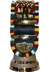 Glocken mit Appenzeller Riemen mit Zottel, Nr. 30 H